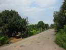 viewbankasetsomboon8 (5)